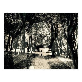 Gespenstischer Geist in der Holzbildpostkarte Postkarte