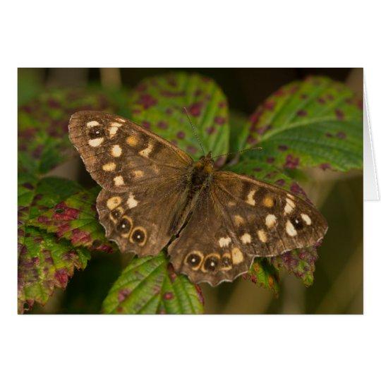 Gesprenkelter hölzerner Schmetterling Grußkarte
