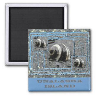 Gestreifte Turbin Uferschnecke-abstrakte Collage Quadratischer Magnet