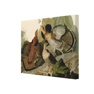 Getrumpftes Waldhuhn durch John Audubon Leinwanddruck