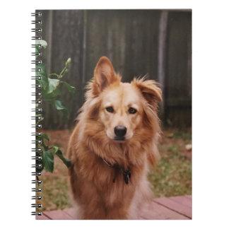 Gewundenes Notizbuch mit Foto eines Hundes Spiral Notizblock