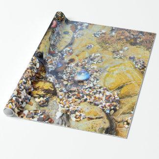 Gezeiten-Pool-Packpapier Geschenkpapier
