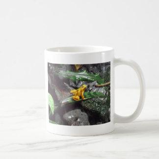 Gift-Pfeil-Frosch-Foto Kaffeetasse