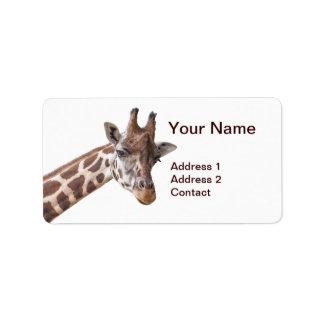 Giraffe - Adressen-Etikett Adressaufkleber
