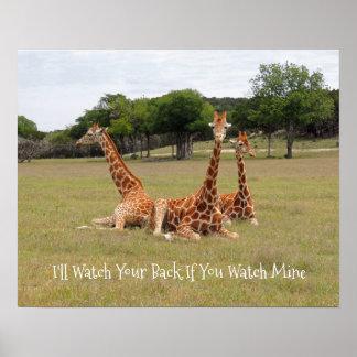 Giraffe drei an der versteinerten Kante Poster