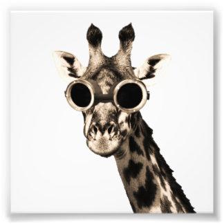 Giraffe mit Steampunk Sonnenbrille-Schutzbrillen Fotodruck
