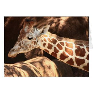 Giraffe Notecards Karte