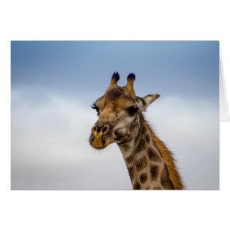 Giraffe von Südafrika Karte