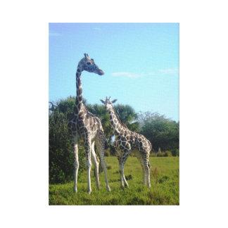 Giraffen-Familie Leinwanddruck