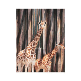 Giraffenfamilie Leinwanddruck