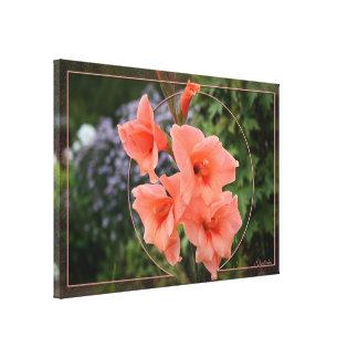 Gladiolus Leinwanddruck