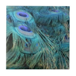Glänzende blaue Pfau-Federn Kleine Quadratische Fliese