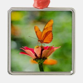 Glänzender Schmetterling auf Leuchtorange Gerber Silbernes Ornament