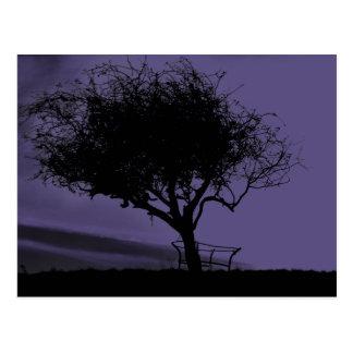 Glastonbury Weißdorn. Baum auf Hügel. Lila Postkarte