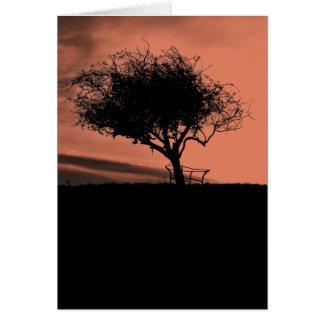 Glastonbury Weißdorn. Baum auf Hügel. Orange Karte
