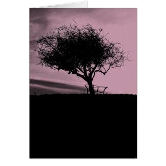 Glastonbury Weißdorn. Baum auf Hügel. Rosa, Karte