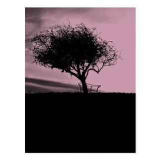 Glastonbury Weißdorn. Baum auf Hügel. Rosa, Postkarte