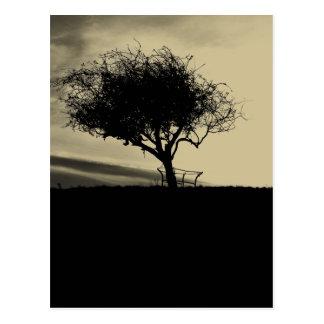Glastonbury Weißdorn. Baum auf Hügel. Sepia-Farbe Postkarte
