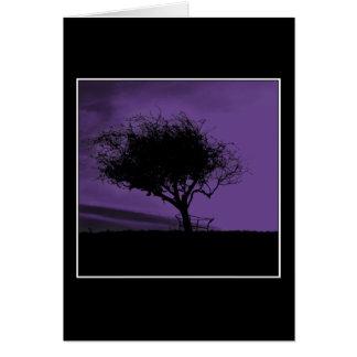 Glastonbury Weißdorn. Baum auf Hügel. Veilchen, Karte