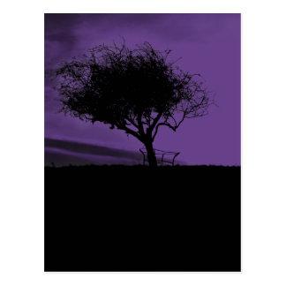 Glastonbury Weißdorn. Baum auf Hügel. Veilchen, Postkarte