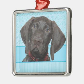 Glatter Graubär im Blau Silbernes Ornament
