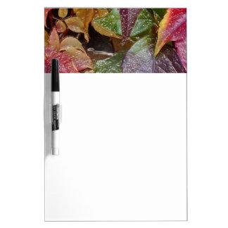 Glattes Herbst-Blätter, Wachs-Blick 001.1.2 Trockenlöschtafel