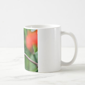 Glauben Sie! Kaffeetasse