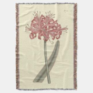 Glaucous Leaved Amaryllis-botanische Illustration Decke