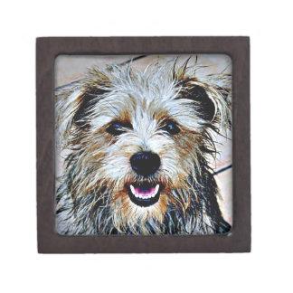 Glen der Imaal Terrier-Pop-Kunst Schmuckkiste
