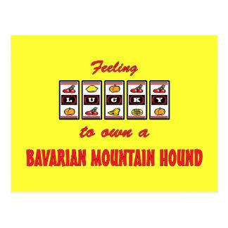 Glücklich zu eigenem ein bayerischer Gebirgsjagdhu Postkarte