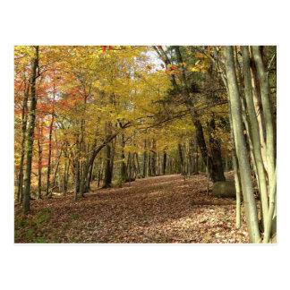 Glückliche Erntedank-Ernte-Natur-Szenen-Postkarte Postkarte