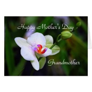 Glückliche Grandother der Tag der Mutter Karte