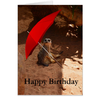 Glückliche Meerkat Geburtstags-Gruß-Karte Karte