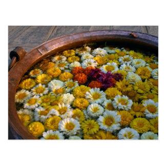 Glückliche Ringelblumen Postkarte