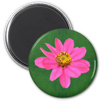 Glückliche rosa Zinnia-Blüten-Magneten Runder Magnet 5,1 Cm