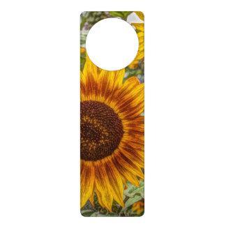 glückliche Sonnenblume des französischen Türanhänger