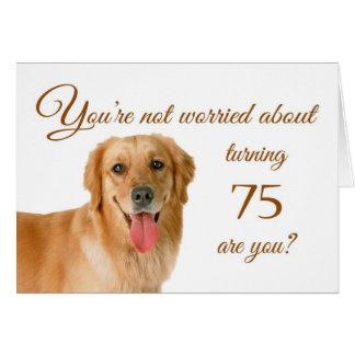 Glücklicher 75. Geburtstag, besorgter Labrador Karte