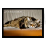 Glücklicher Ruhestand, der Arbeit Schlafenkatze ve Grußkarte