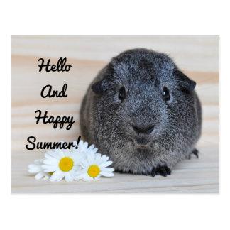 Glückliches Sommer-Meerschweinchen Postkarte