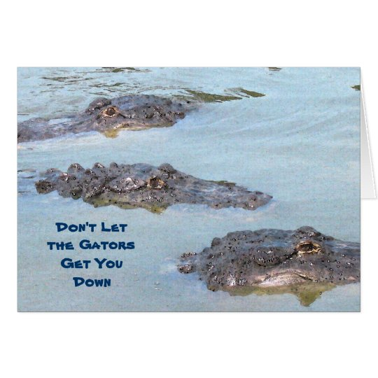 Glückwunsch-Alligatorkarte Grußkarte
