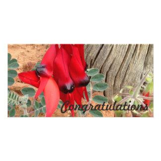 Glückwunsch-Fotokarte - Sturts Wüsten-Erbse Karte