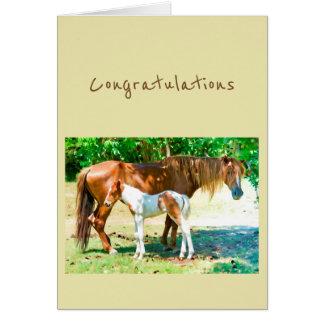 Glückwunsch-neues Zusatz-Baby-Pferdefohlen Karte