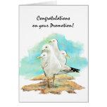 Glückwunsch-Werbeaktion von den Gruppen-Seemöwen, Karten