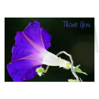 Glühende Winde danken Ihnen Mitteilungskarte