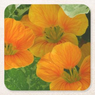 Glühender orange Kapuzinerkäse-Party-Untersetzer Kartonuntersetzer Quadrat