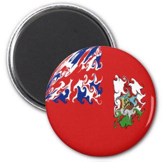 Gnarly Flagge Bermudas Magnete