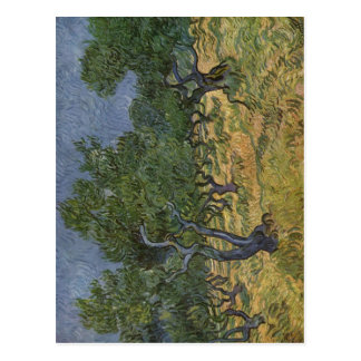 Gogh, Technik 1889 Vincents van Olivenhain? L auf Postkarte