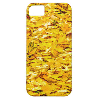 Gold des Herbstes iPhone 5 Hülle