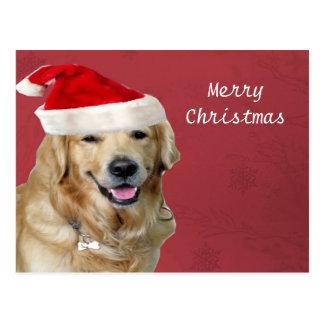 Golden retriever-frohe Weihnachten Postkarte