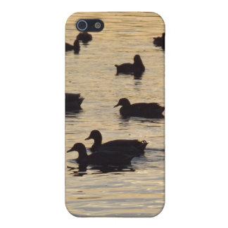 Goldene schimmernde Teich-Enten und Gänse Etui Fürs iPhone 5